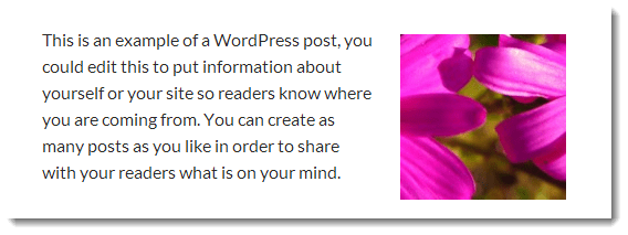 wrap text around image