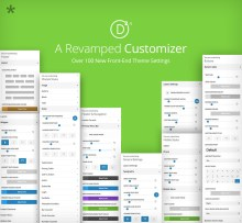 divi_2-4_customizer