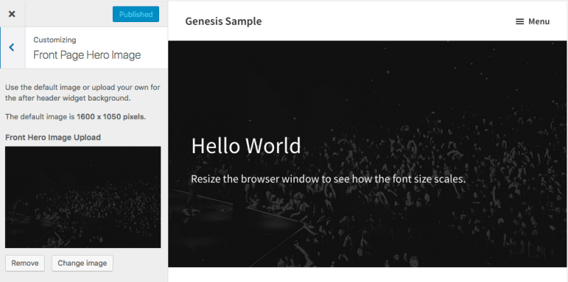 Add Customizer Image After Header