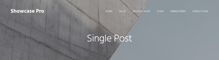 showcase-pro-page-header