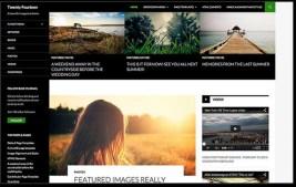 WordPress 3.8 Default Theme TwentyFourteen