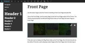frontend-editing-feature