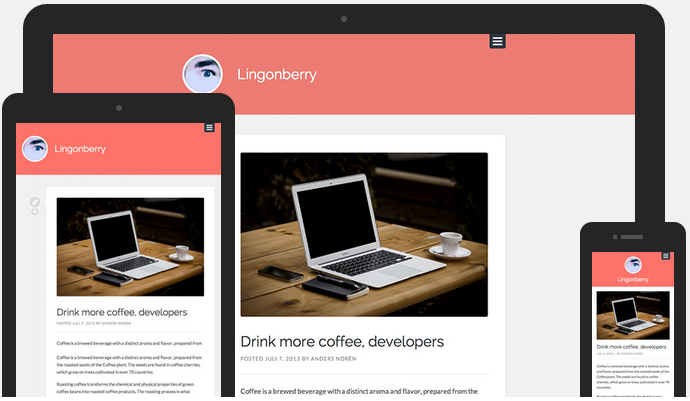 Anders Norén on Achieving Simplicity in WordPress Theme Design