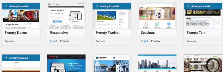View More Themes in the WordPress Theme Browser