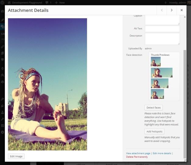 face-detection-attachment-details