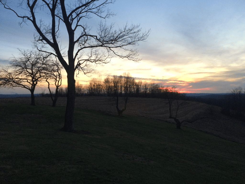 Sunset as Seen From Kim Parsell's Property