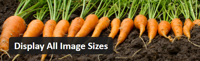 WPShout Releases New WordPress Plugin that Displays all Image Sizes