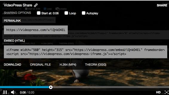 VideoPress Sharing Options