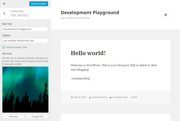 site-identity-new-customizer-panel