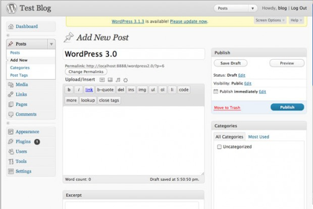 WordPress 3.0 Post Editor Interface