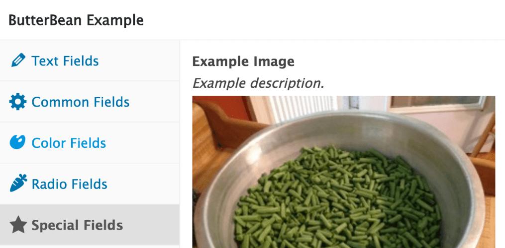 ButterBean Post Meta Box Framework 1.0 Released