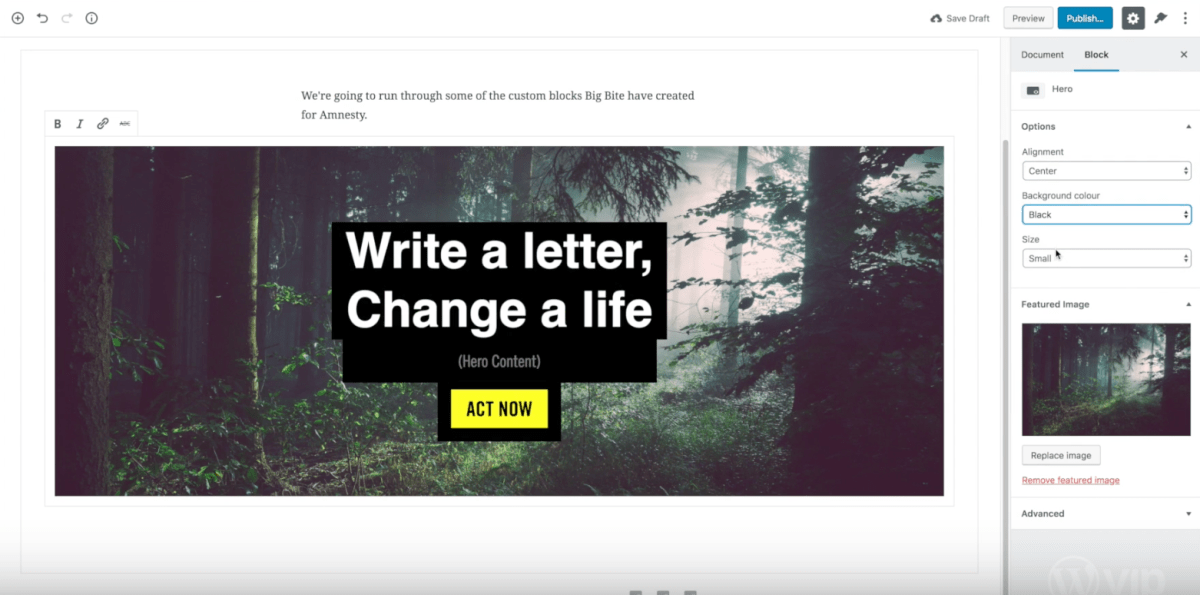 Big Bite Creative to Launch New Amnesty International Website based on Gutenberg