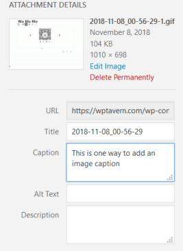 firefox_2018-11-08_02-02-58 Adding Aligned Images to Paragraphs in Gutenberg Is Not as Tough as I Thought design tips