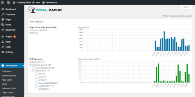 Screenshot of a statistics page in the W3 Total Cache plugin.