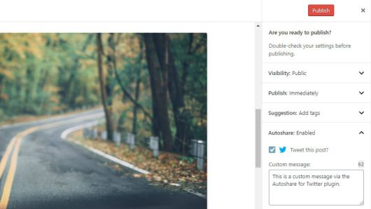 Screenshot of the Autoshare for Twitter pre-publish check.