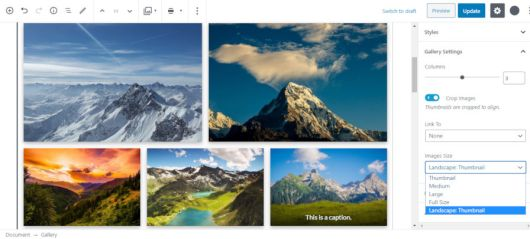 Screenshot of selecting a custom image size for the Gallery Gutenberg block.
