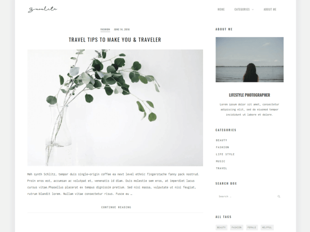 SaraLite By ZThemes Studio