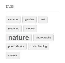 wordpress-tag-cloud-image