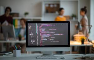 How to Be a WordPress Developer