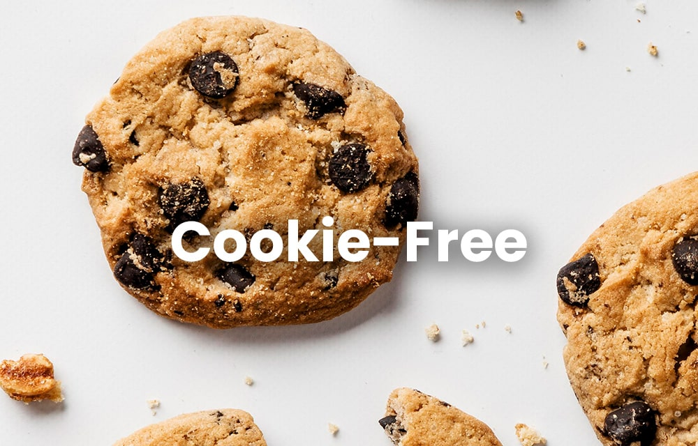 Cookie-Free Domains in WordPress