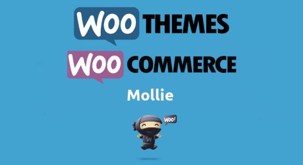 Woocommerce Mollie