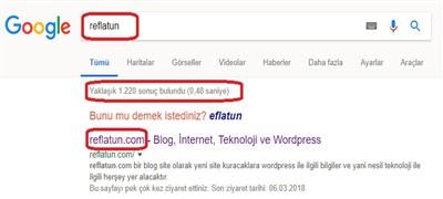 domain nasıl alınır
