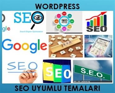 Seo uyumlu Wordpress temalar