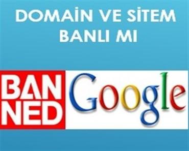 domain banlı mı alanadı cezalı mı