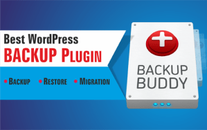 Best WordPress Backup Plugin Backupbuddy