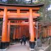 外国人に最も人気の観光地「伏見稲荷大社」に行ってきた!