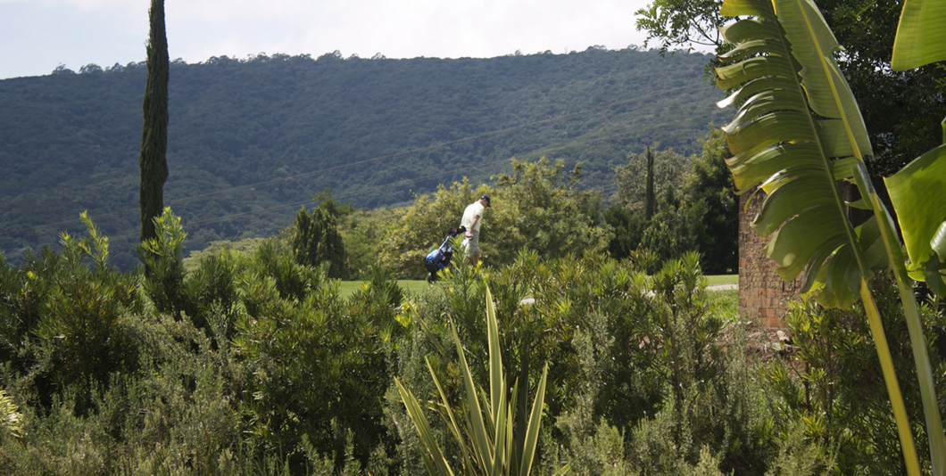 vista_golf