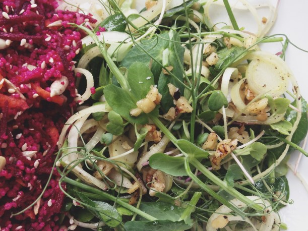 Peashoots and sprouts salad