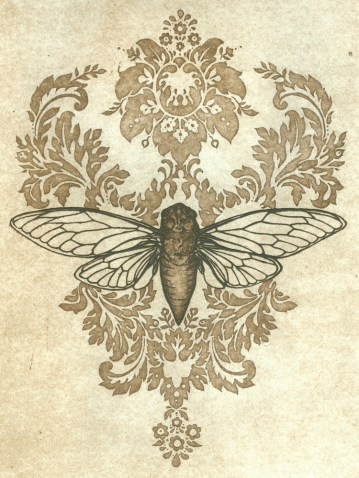 Insect Collection: Cicada Song (steel plate intaglio, 2010)