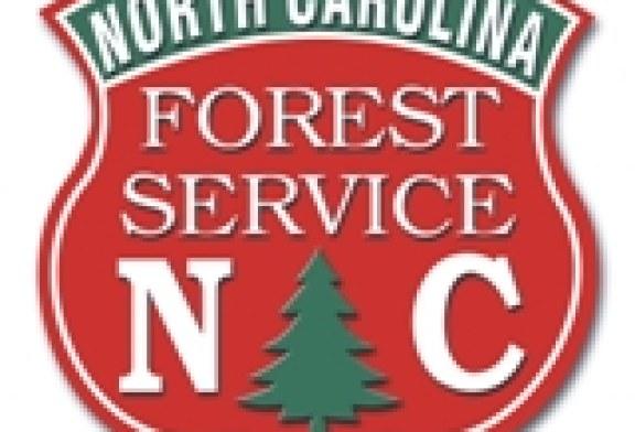 N.C. Forest Service Nursery Program accepting seedling orders beginning July 3