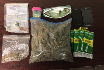 Macon County Traffic Stop Results in Drug Bust