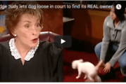 Judge Judy Let a Little Dog Loose in Courtroom to Choose His Real Owner