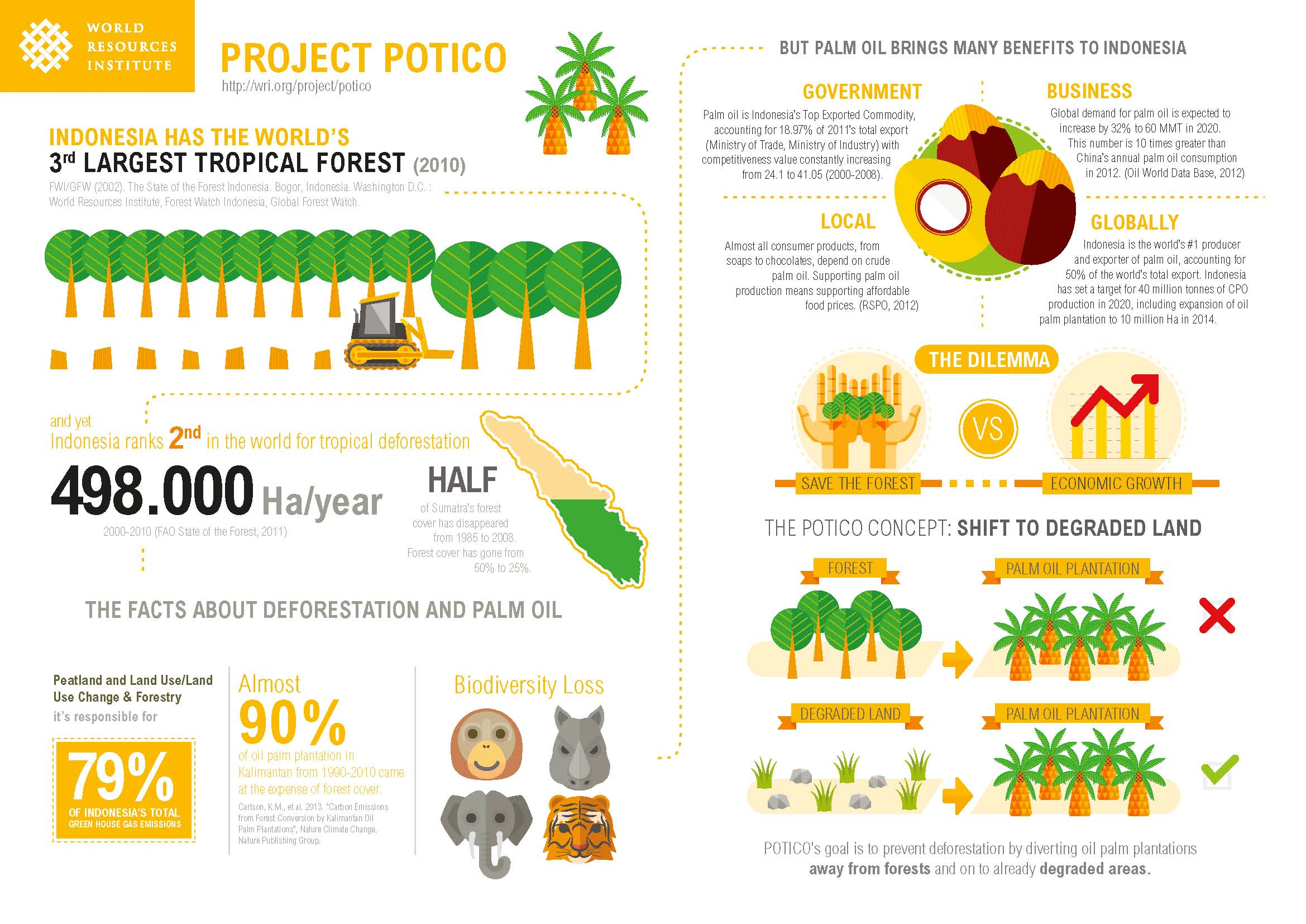 The Idea Behind Potico Palm Oil In Indonesia