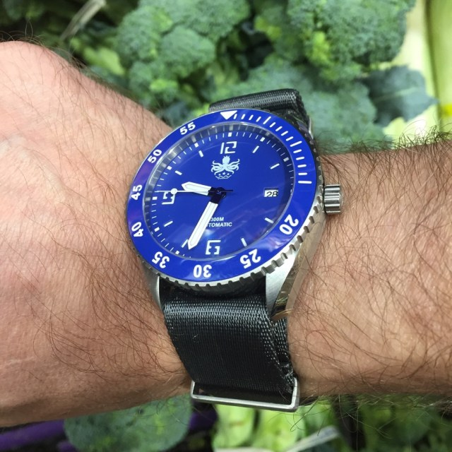 470c877e971 The goal is to get a nice dive watch with an automatic movement for a  reasonable price. Can they pull it off  Let s begin. The Reef Master ...