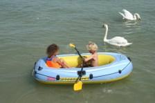 Swan lake?