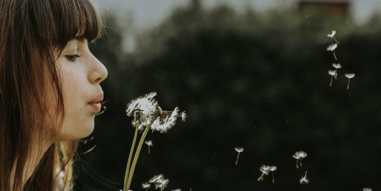 Dandelion wishes vs. prayer