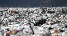 biodegradable plastic bags disappear them