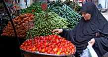 egypt commodity exchange