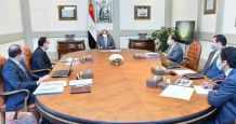 egypt sisi power linkage developments