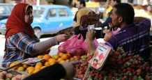 egypt sector lines private pandemic