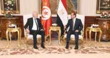 egypt jica regional director royal