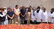 Luxor Sun-Dried Tomatoes Project invests in women's agricultural role, raises export earnings by 30%: International Cooperation Minister