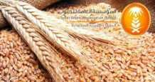 saudi-arabia wheat sago