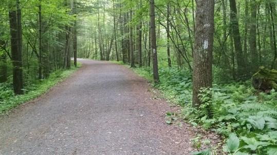 AT pic of bike path