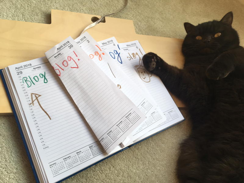 Cat lying beside a diary with a daily note to Blog!