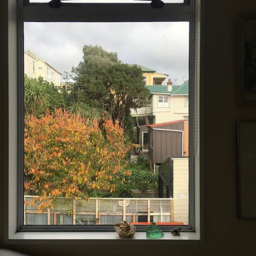 neighbouring houses and trees seen through a window